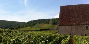 Trek Travel Custom Burgundy Cycling Vacation