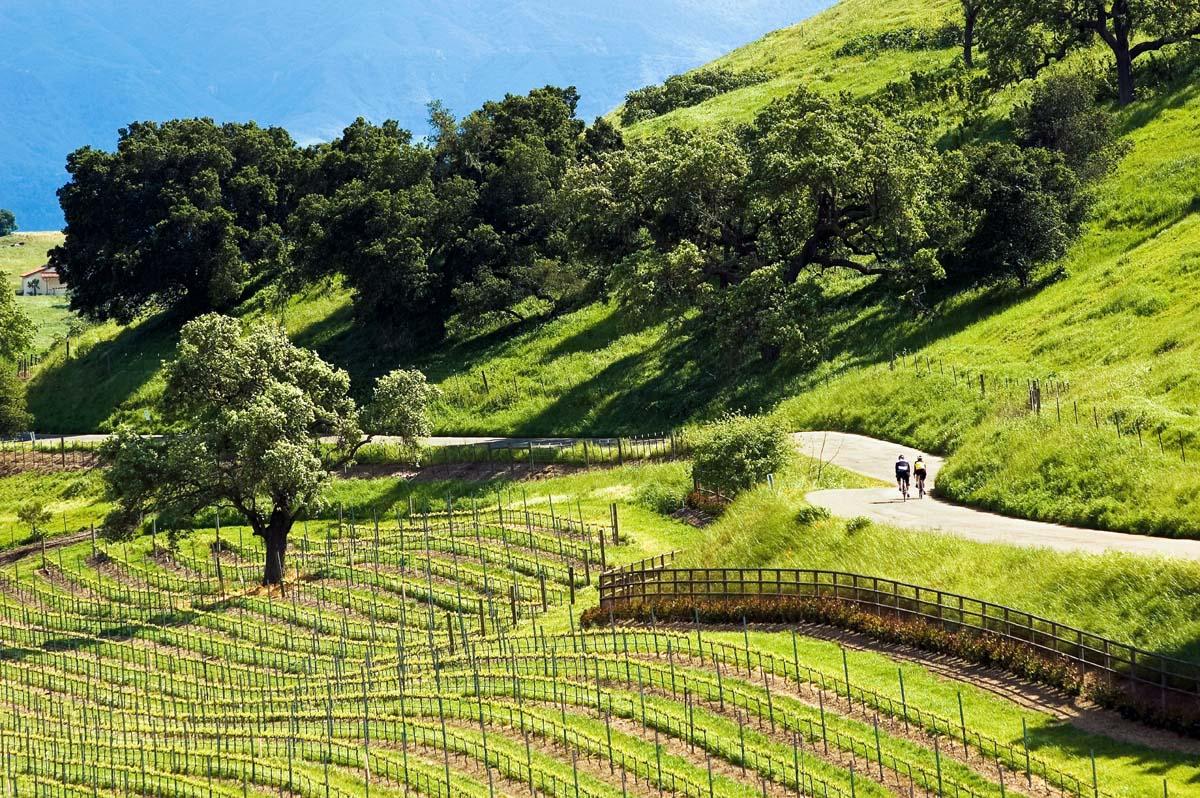 spaswinefood: Wine tasting on Santa Barbaras Urban Wine
