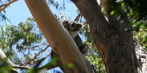 Trek Travel South Australia Custom Cycling Vacation