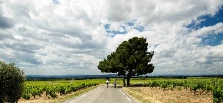 provence-explorer-03-1600x670