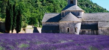 Lavender fields aplenty on Trek Travel's Provence luxury bike tours.