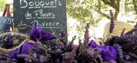provence-luxury-06-1600x670