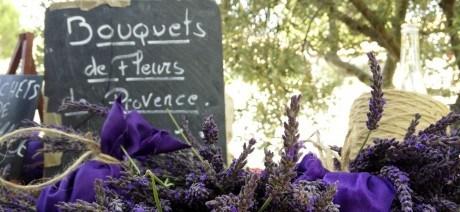 France/Provence/Provence Explorer 06/17/2012