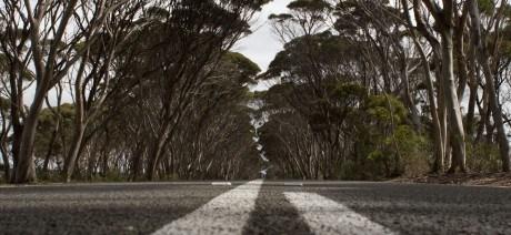 09SA_Road_Australia_1600x670