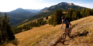 Whistler Mountain Bike Tour