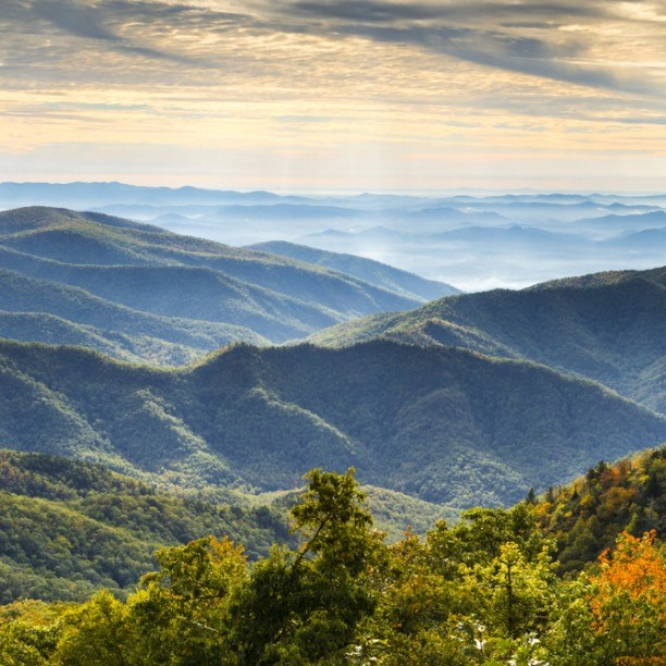 View full trip details for 2019 Asheville to Brevard