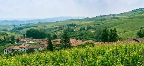 Trek Travel Piedmont, Italy Bike Tour