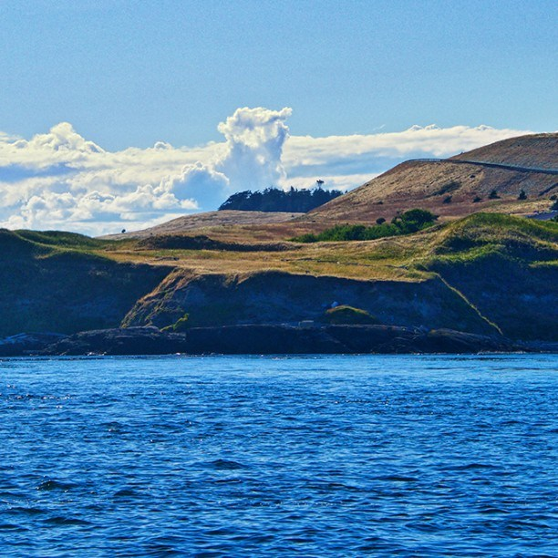 View full trip details for San Juan Islands
