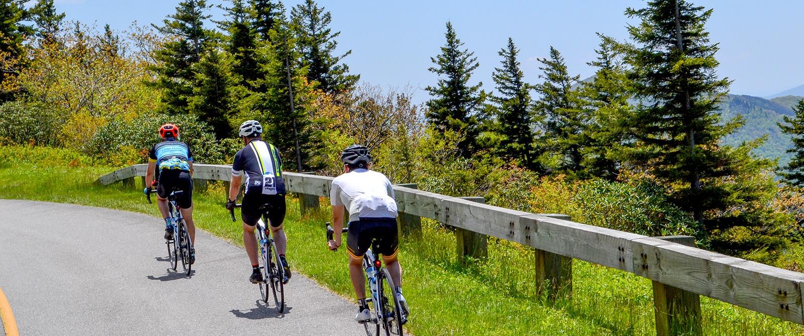 Asheville To Brevard Bike Tours Cycling Vacations Garmin 8000 Wiring Diagram Istock 000022806875 Xxxlarge 1600x670 Dsc 2631 Jbinkowski 2636