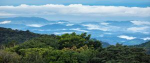 Costa Rica's Cloud Forest