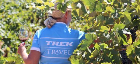 Enjoy wine tours and tastings on a California Wine Country bike tour