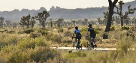 Palm Springs and Joshua Tree National Park bike tour with Trek Travel