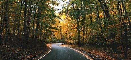 Vermont-foliage-1600x670