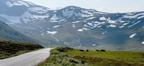Norway-tourism-sognefjellet
