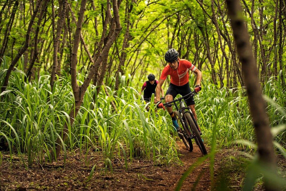 Trek Travel Mountain Bike 1000x667