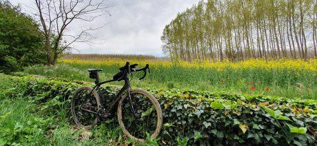 19GIGL_bike_wall_1600x670