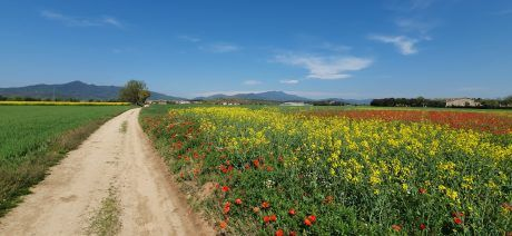 Join Trek Travel for a gravel bike tour in Girona, Spain