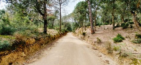 19GIGL_road_1600x670-3