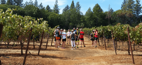 0320b80def7 California Wine Country Luxury Bike Tours & Cycling Vacations