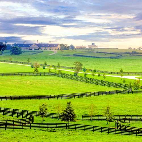 Explore the Bourbon Trail on a bike tour through Kentucky with Trek Travel