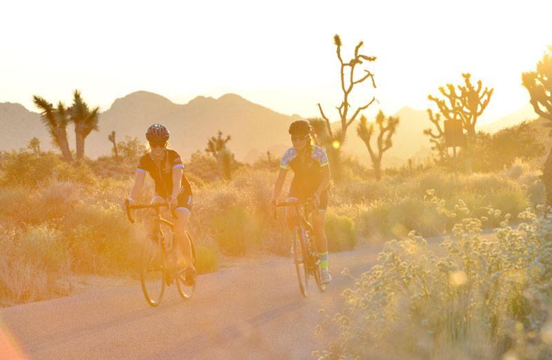 Trek Travel Palm Springs Bike Tour