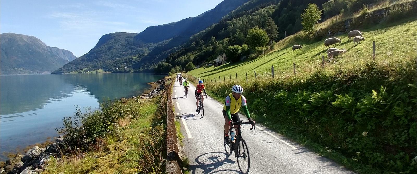 Norway Bike Tour