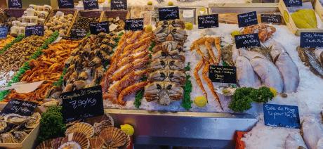 21NDSG - Fish Market Canva - 1600x670