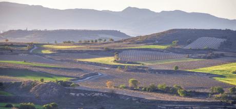 21RIV-Rioja-CANVA-1600X670