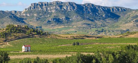 21RIV-Rioja4-CANVA-1600X670