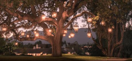 22SBO-Ojai Inn-35- Oak-Tree-1600X670