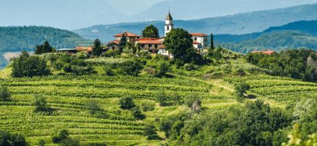 22SL-Slovenia-Goriska-Brda-CANVA-1600X670