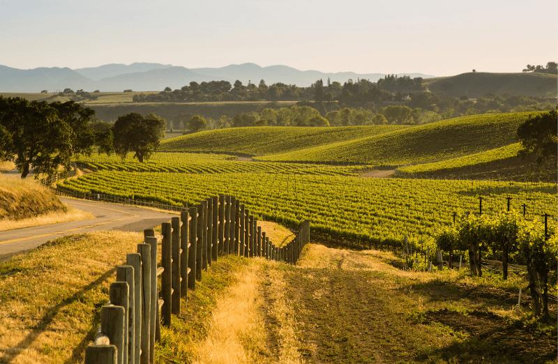 Trek Travel California Wine Cycling Vacations