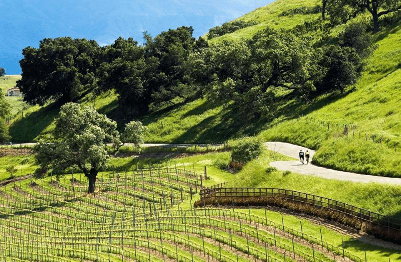 Trek Travel Santa Barbara Cycling Vacations